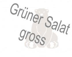 Grüner Salat  gross