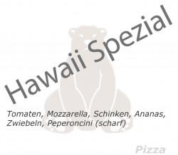 22. Hawaii Spezial
